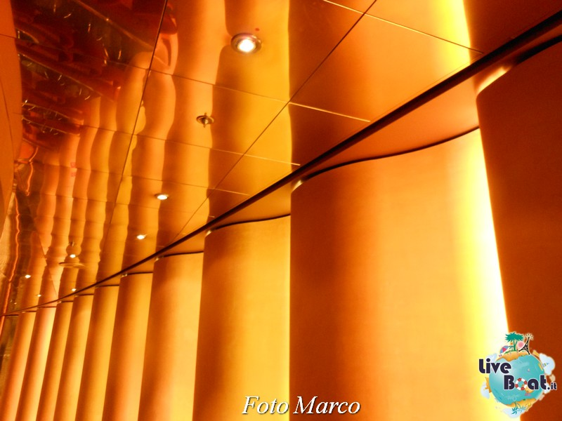 -08-msc-armonia-jpg
