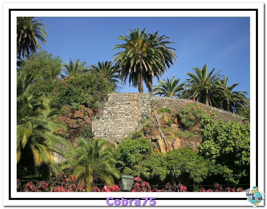 Che cosa visitare a Madera - Funchal-funchal-madera-forum-liveboat-crocierepict0025-jpg