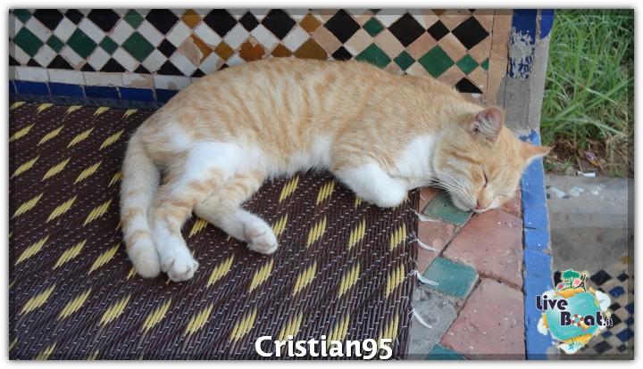 8/10/12- Casablanca-costa-deliziosa-diretta-nave-liveboat-crociere-35-jpg
