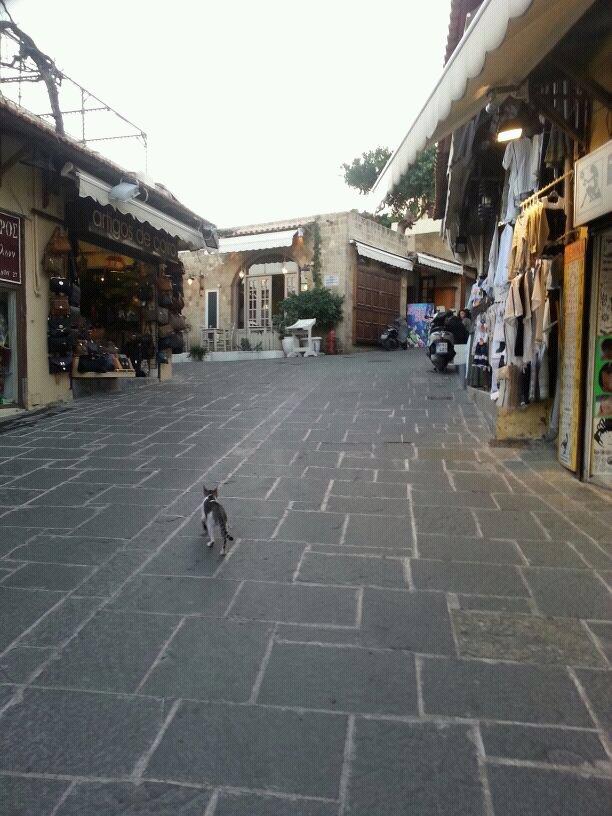 2013/10/24 Rodi Costa Mediterranea-uploadfromtaptalk1382626712322-jpg