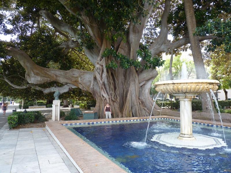 Costa Atlantica: le Grandi Capitali dal 4 al 14 settembre-grandi-alberi-1-jpg