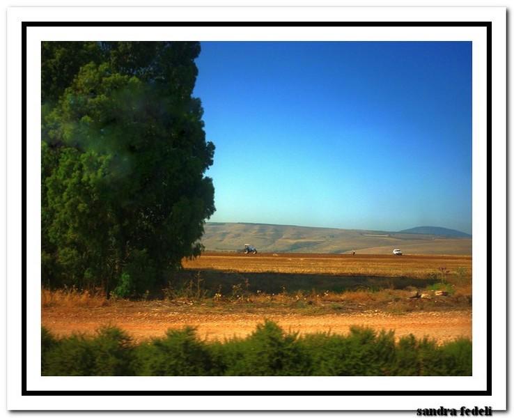 07/06/2013 Costa deliziosa - Ritorno in Terra Santa-p1140292-jpg