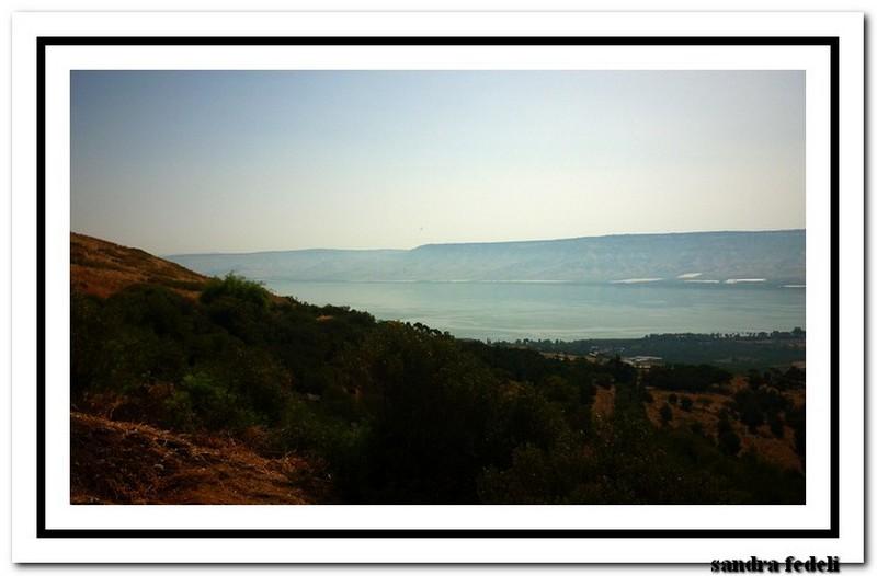 07/06/2013 Costa deliziosa - Ritorno in Terra Santa-p1140307-jpg