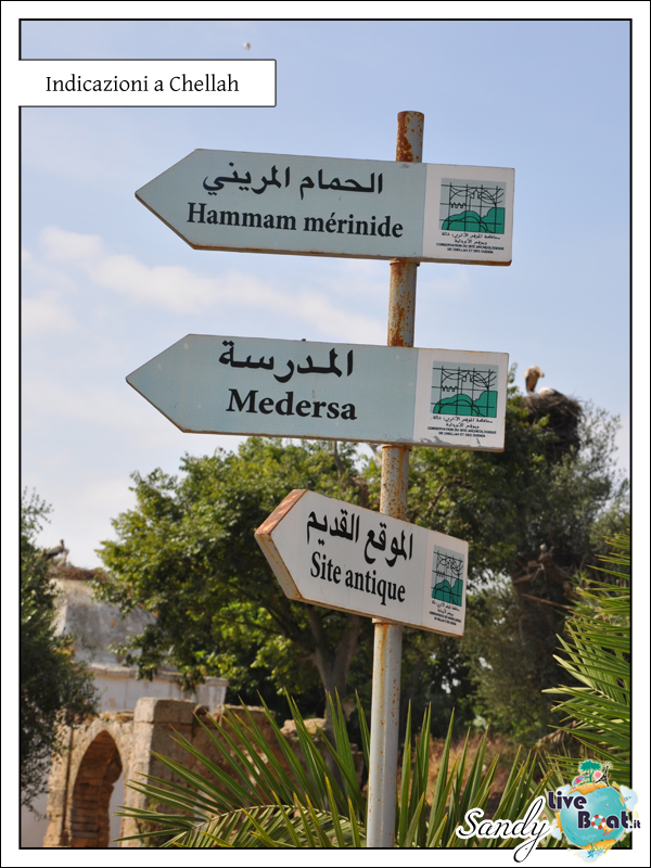 C.MEDITERRANEA-Oltre le Colonne d'Ercole, 31/05/12-10/06/12-05-jpg