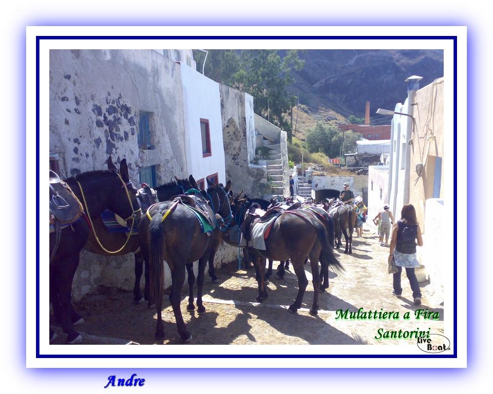 Isole Greche - Costa Fortuna - Andre-costa-fortuna-isole-greche-liveboat-crociere-57-jpg