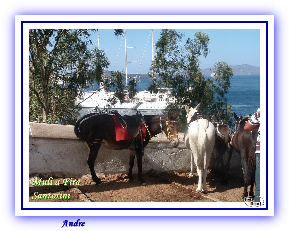 Isole Greche - Costa Fortuna - Andre-costa-fortuna-isole-greche-liveboat-crociere-58-jpg