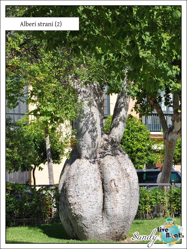 C.MEDITERRANEA-Oltre le Colonne d'Ercole, 31/05/12-10/06/12-costa_mediterranea_oltre_colonne_ercole_cadice-3-jpg