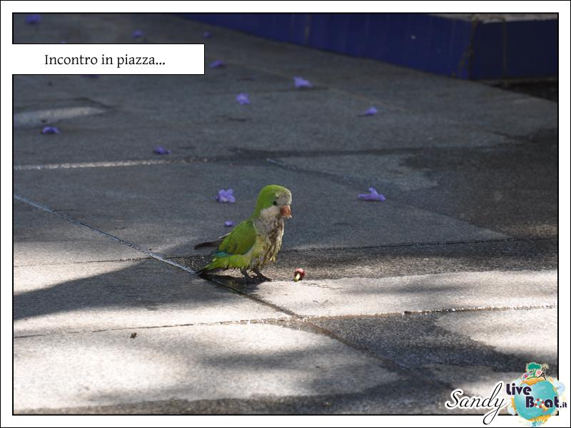 C.MEDITERRANEA-Oltre le Colonne d'Ercole, 31/05/12-10/06/12-costa_mediterranea_oltre_colonne_ercole_cadice-8-jpg