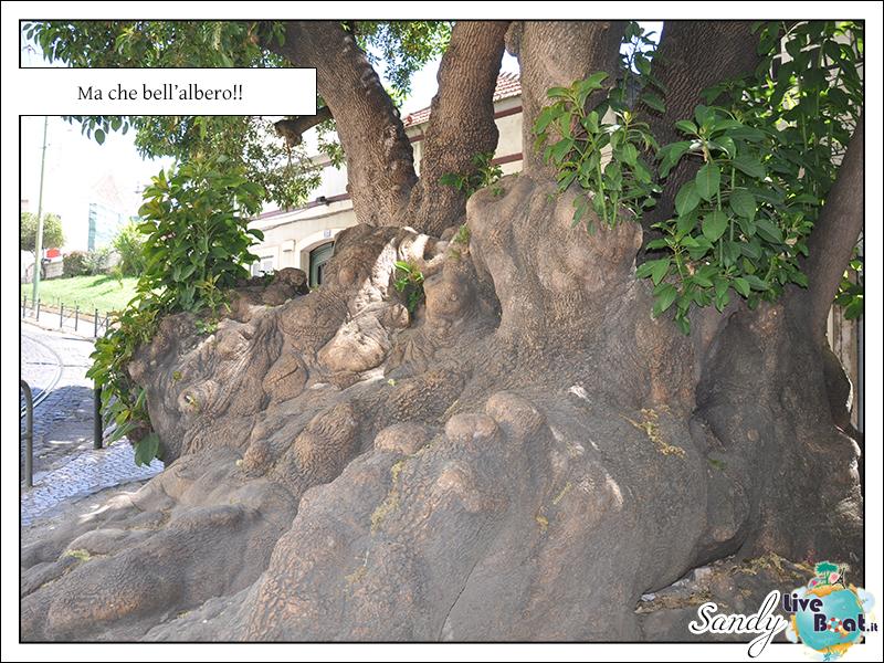 C.MEDITERRANEA-Oltre le Colonne d'Ercole, 31/05/12-10/06/12-06-jpg
