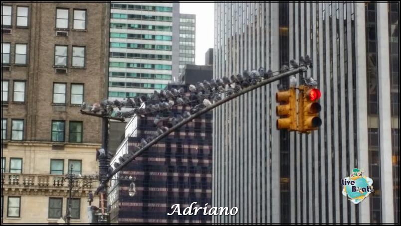 New York, soggiorno-45foto-new-york-crociera-lancio-diretta-liveboat-crociere-jpg