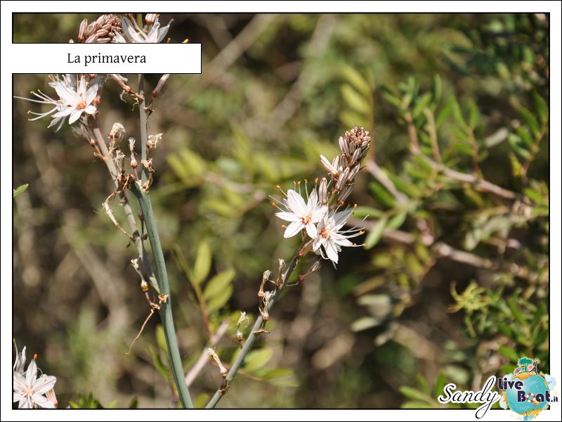 COSTA SERENA - Isole delle perle, 28/03/2012 - 01/04/2012-15-jpg
