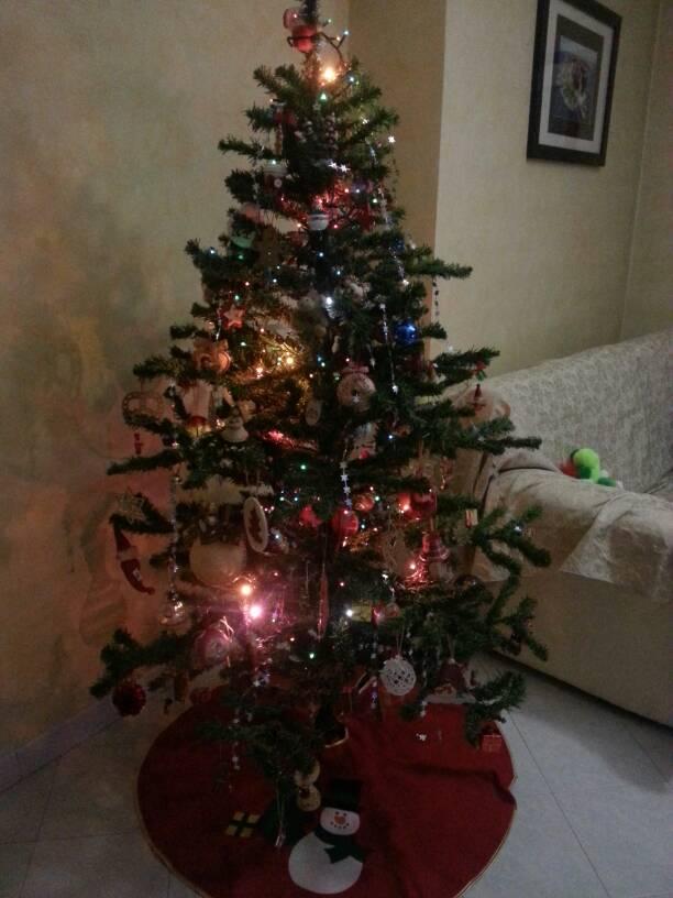 Natale 2013 le nostre foto ed emozioni-uploadfromtaptalk1386526483096-jpg
