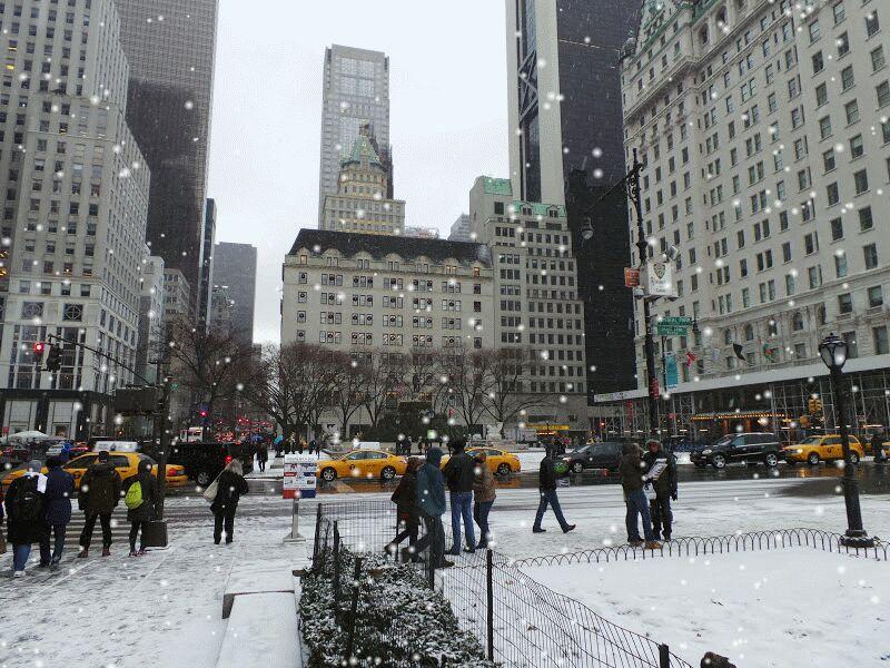 New York, soggiorno-fao-swartz-new-york-2-jpg
