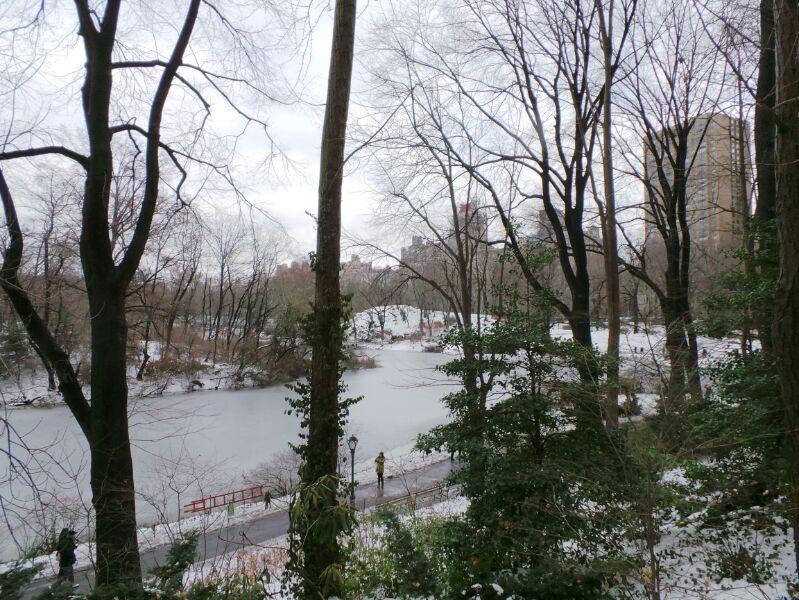 New York, soggiorno-zoo-new-york-3-jpg