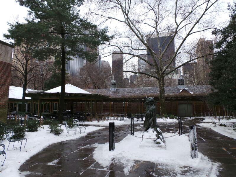 New York, soggiorno-zoo-new-york-4-jpg