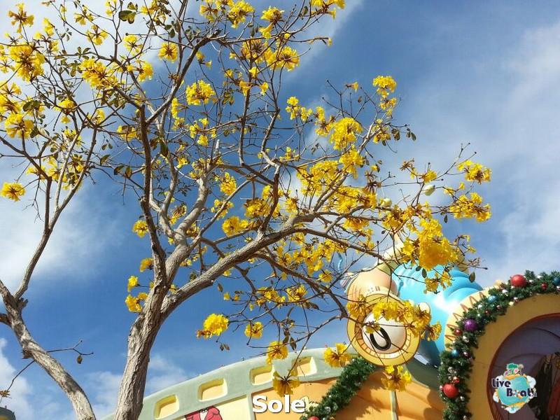 2013/12/25  Orlando -> Universal + Island Of Adventure (gior-19-orlando-island-of-adventure-diretta-liveboat-crociere-jpg