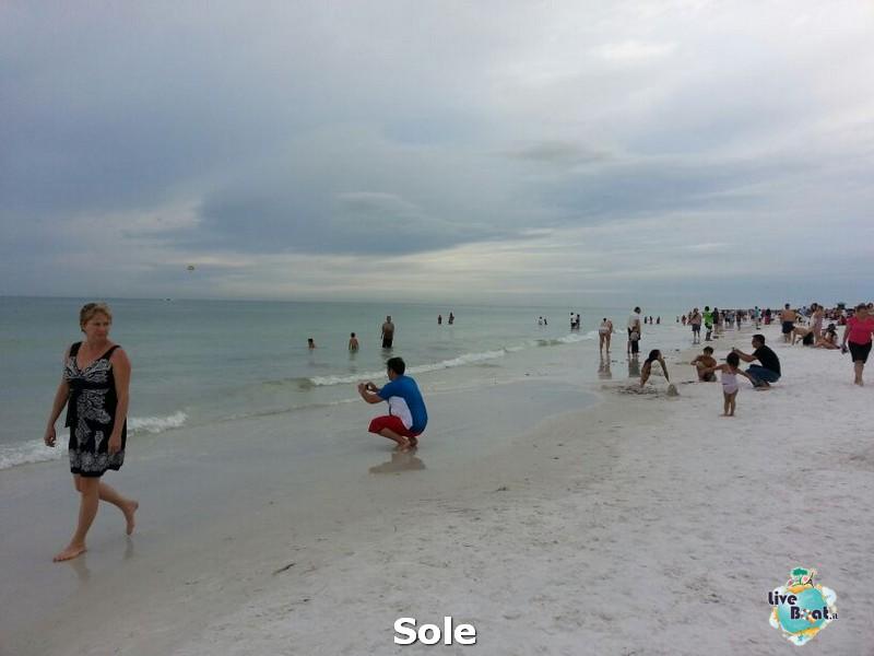 2013/12/26 Ellenton e Sarasota-5-spiagga-sesta-key-diretta-liveboat-crociere-jpg