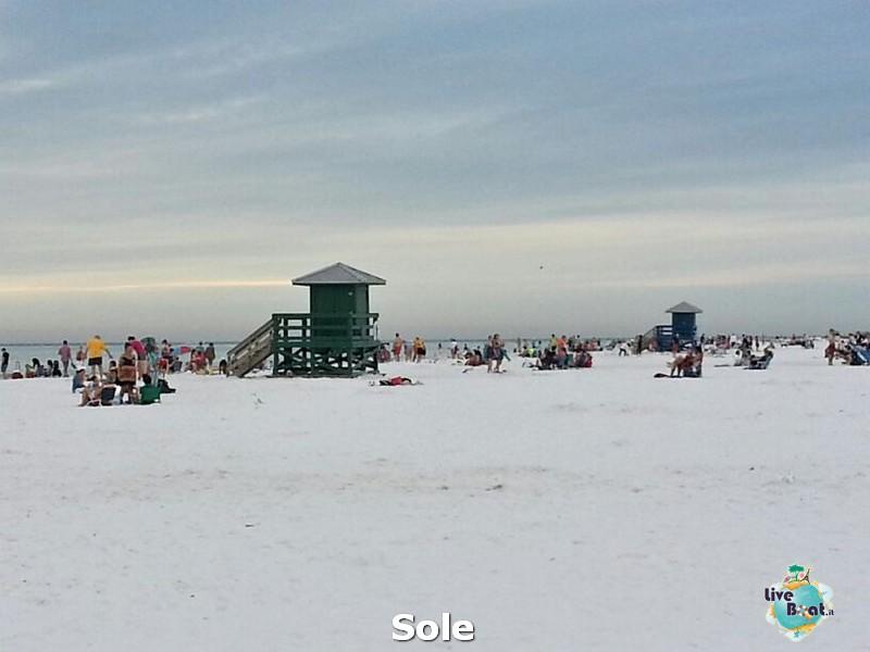 2013/12/26 Ellenton e Sarasota-6-spiagga-sesta-key-diretta-liveboat-crociere-jpg