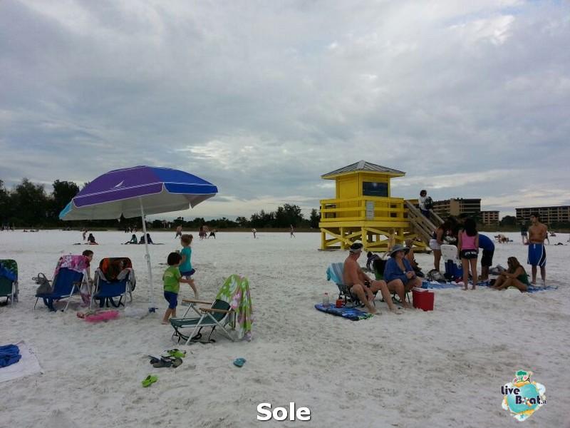 2013/12/26 Ellenton e Sarasota-9-spiagga-sesta-key-diretta-liveboat-crociere-jpg