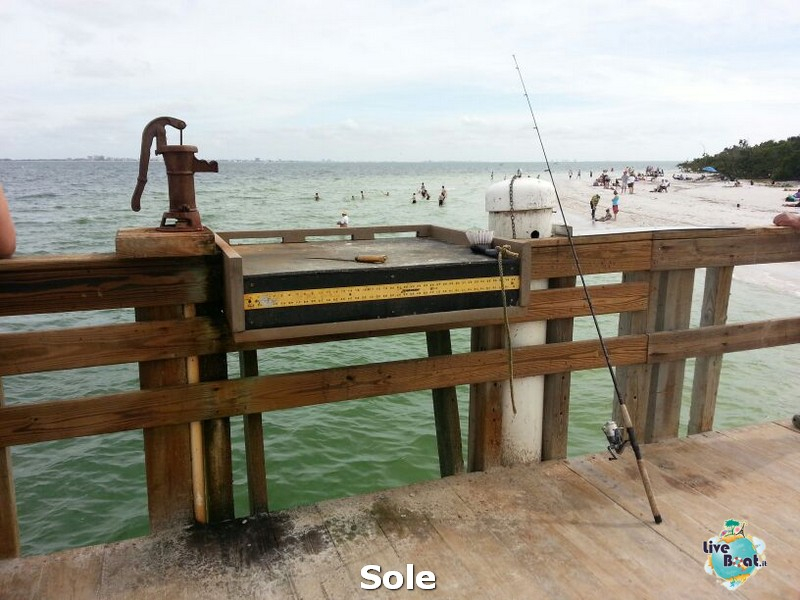 2013/12/27 Naples -> spiaggia, visite, relax + pernottamento-33-spiagga-sanibel-diretta-liveboat-crociere-jpg