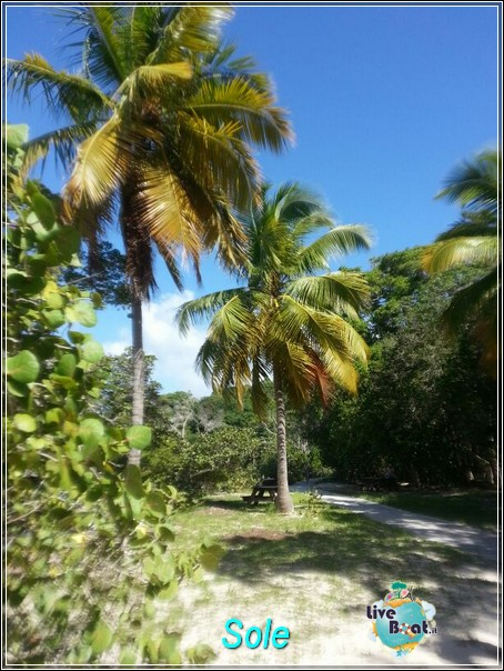 2014/01/01  St. Thomas (Isole Vergini USA)-saint-john-baya-trunk-diretta-liveboat-crociere-6-jpg