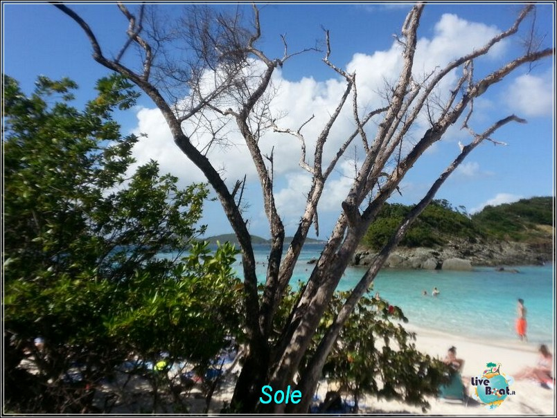 2014/01/01  St. Thomas (Isole Vergini USA)-saint-john-baya-trunk-diretta-liveboat-crociere-8-jpg