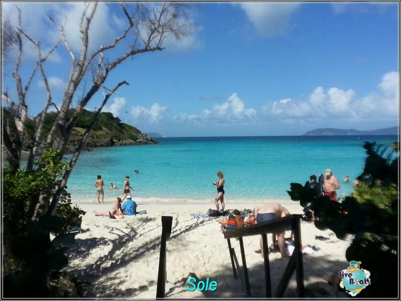 2014/01/01  St. Thomas (Isole Vergini USA)-saint-john-baya-trunk-diretta-liveboat-crociere-9-jpg