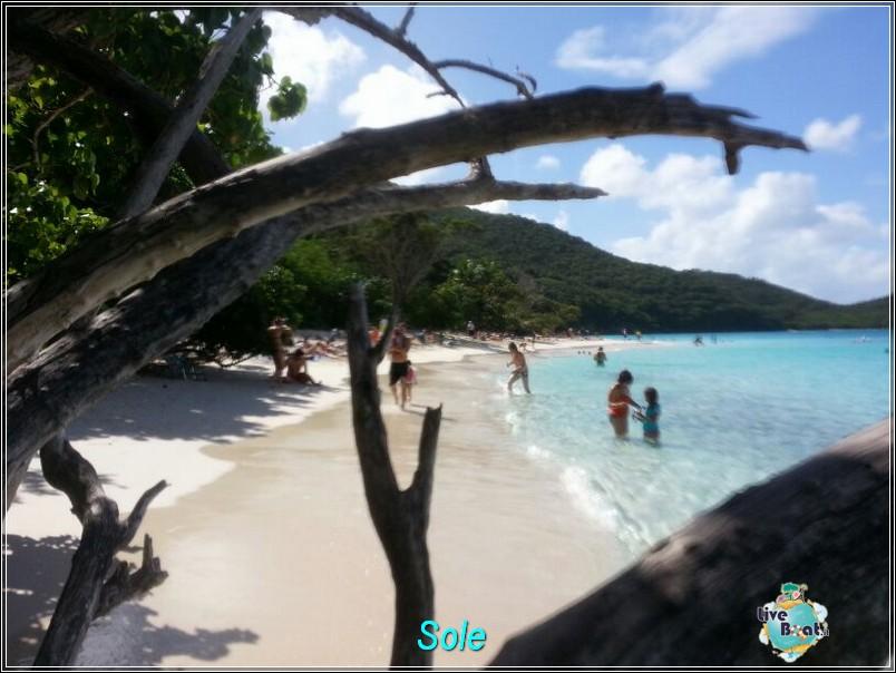 2014/01/01  St. Thomas (Isole Vergini USA)-saint-john-baya-trunk-diretta-liveboat-crociere-11-jpg