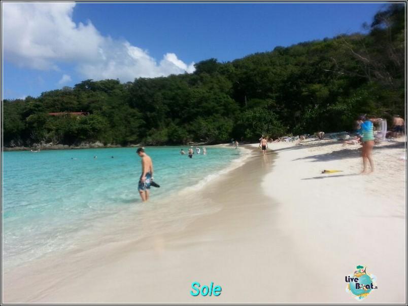 2014/01/01  St. Thomas (Isole Vergini USA)-saint-john-baya-trunk-diretta-liveboat-crociere-16-jpg