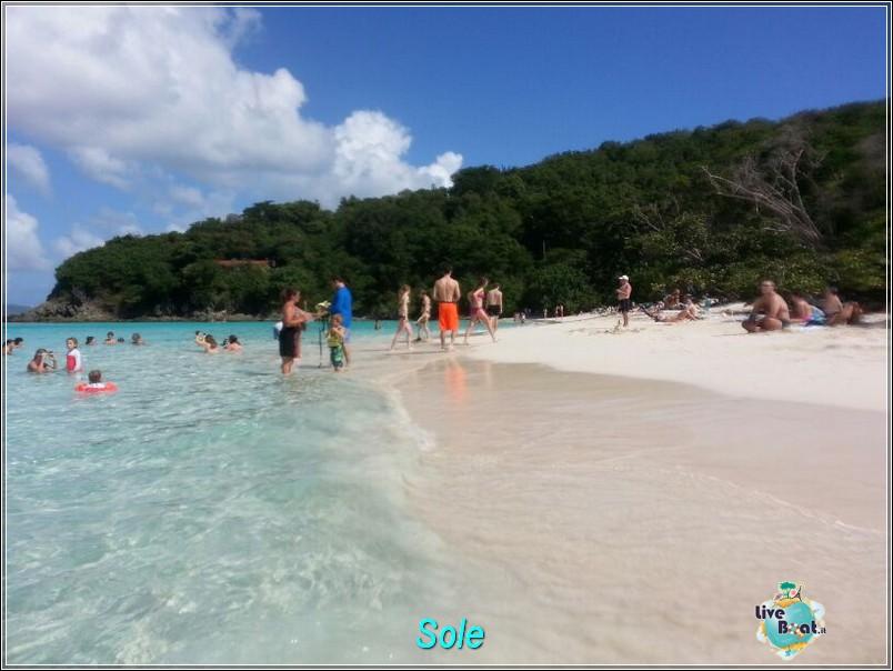 2014/01/01  St. Thomas (Isole Vergini USA)-saint-john-baya-trunk-diretta-liveboat-crociere-21-jpg
