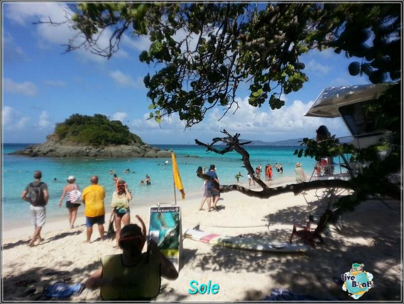 2014/01/01  St. Thomas (Isole Vergini USA)-saint-john-baya-trunk-diretta-liveboat-crociere-23-jpg