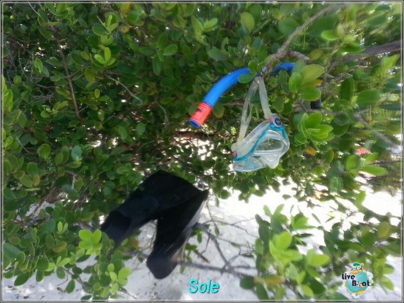 2014/01/01  St. Thomas (Isole Vergini USA)-saint-john-baya-trunk-diretta-liveboat-crociere-28-jpg