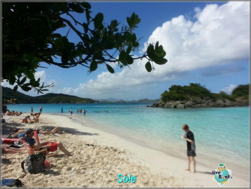 2014/01/01  St. Thomas (Isole Vergini USA)-saint-john-baya-trunk-diretta-liveboat-crociere-34-jpg
