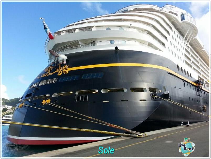 2014/01/01  St. Thomas (Isole Vergini USA)-saint-john-baya-trunk-diretta-liveboat-crociere-36-jpg