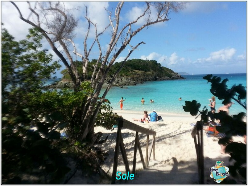 2014/01/01  St. Thomas (Isole Vergini USA)-saint-john-baya-trunk-diretta-liveboat-crociere-49-jpg