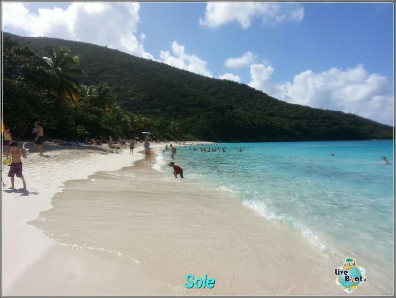 2014/01/01  St. Thomas (Isole Vergini USA)-saint-john-baya-trunk-diretta-liveboat-crociere-57-jpg