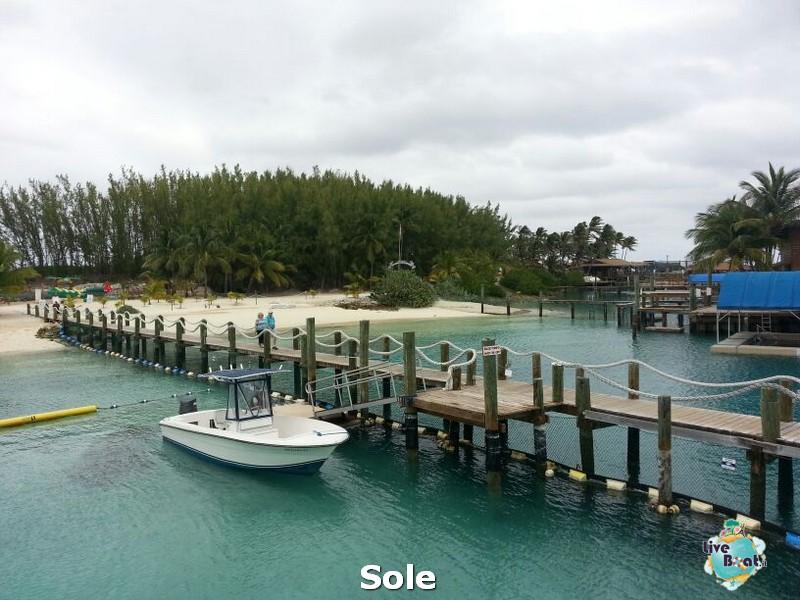 2014/01/03 Nassau (Bahamas)-19-nrwegian-epic-nassau-diretta-liveboat-crociere-jpg