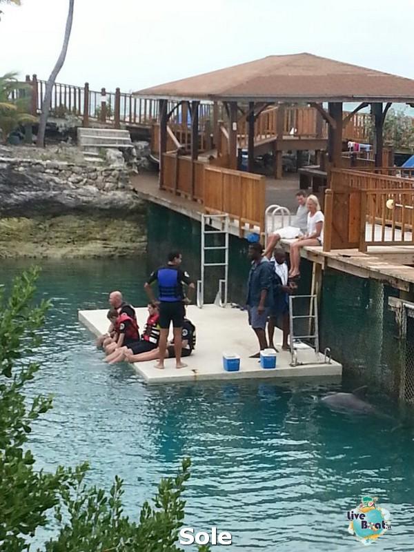 2014/01/03 Nassau (Bahamas)-23-nrwegian-epic-nassau-diretta-liveboat-crociere-jpg