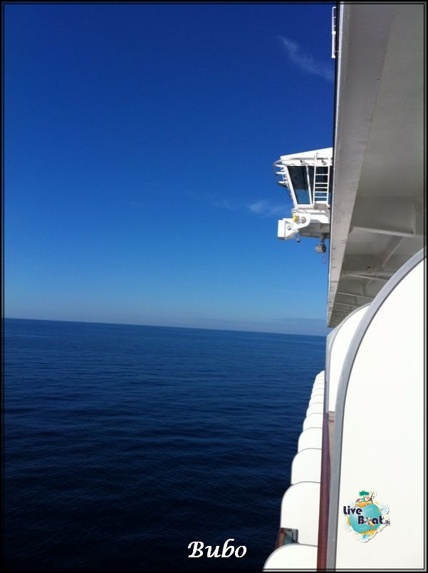 2014/01/04 Navigazione-diretta-costa-deliziosa-bubo-liveboat-crociere-2-jpg