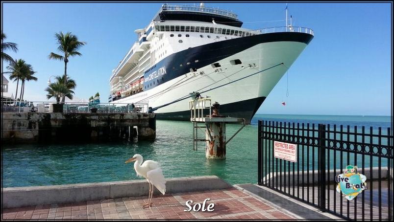 2014/01/05 Key West (visite varie, ecc) + pernottamento-porto-key-west-diretta-sole-liveboat-crociere-2-jpg