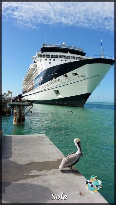 2014/01/05 Key West (visite varie, ecc) + pernottamento-porto-key-west-diretta-sole-liveboat-crociere-3-jpg