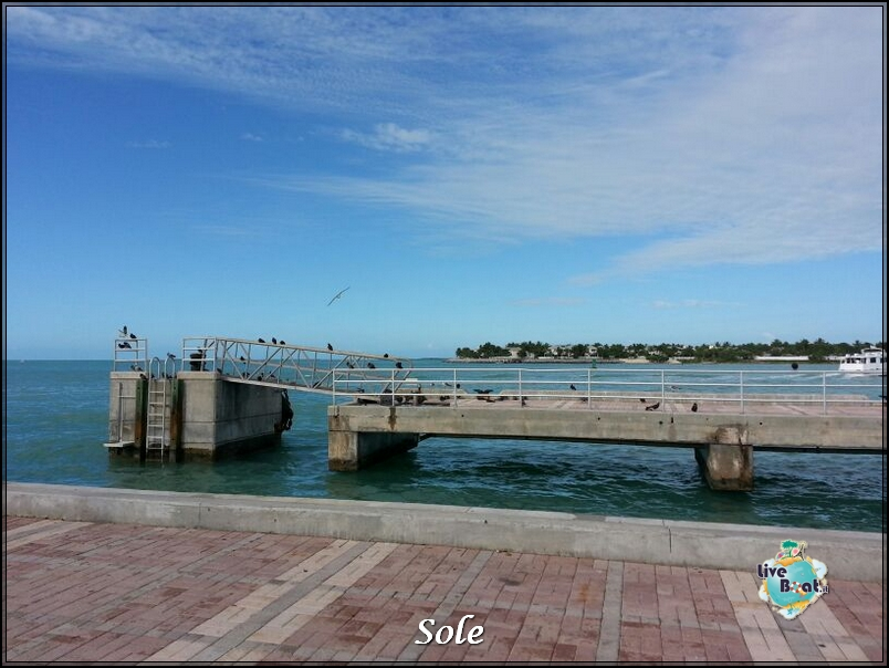 2014/01/05 Key West (visite varie, ecc) + pernottamento-porto-key-west-diretta-sole-liveboat-crociere-4-jpg