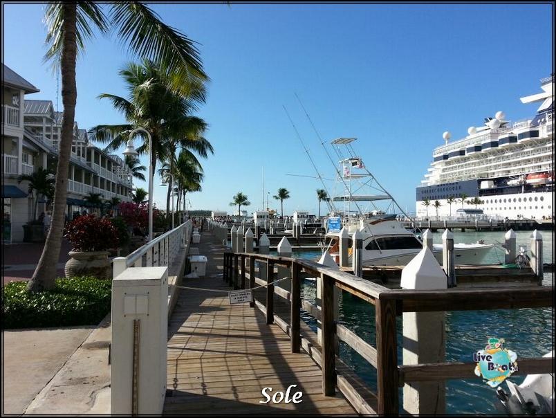 2014/01/05 Key West (visite varie, ecc) + pernottamento-porto-key-west-diretta-sole-liveboat-crociere-7-jpg