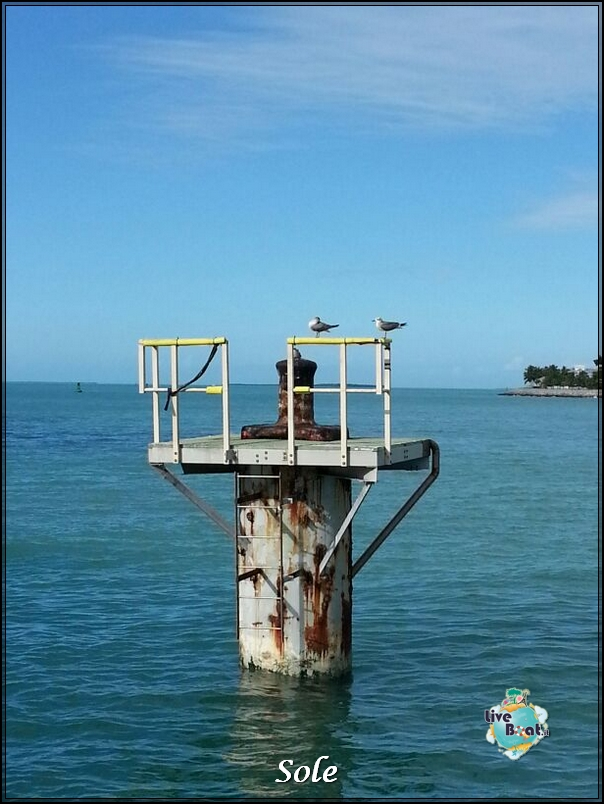 2014/01/05 Key West (visite varie, ecc) + pernottamento-porto-key-west-diretta-sole-liveboat-crociere-9-jpg