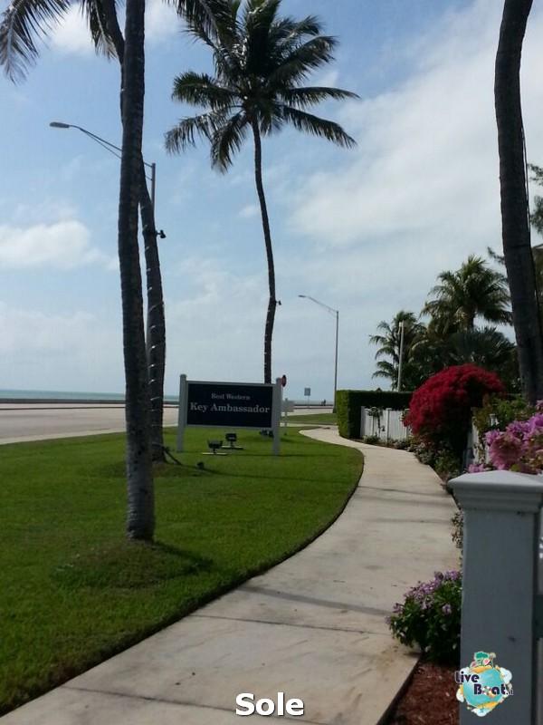 2014/01/05 Key West (visite varie, ecc) + pernottamento-19-key-west-diretta-liveboat-crociere-jpg