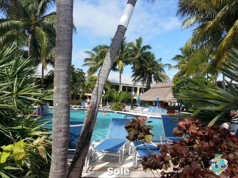 2014/01/05 Key West (visite varie, ecc) + pernottamento-20-key-west-diretta-liveboat-crociere-jpg