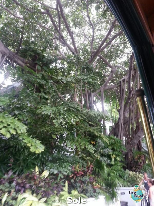 2014/01/05 Key West (visite varie, ecc) + pernottamento-28-key-west-diretta-liveboat-crociere-jpg