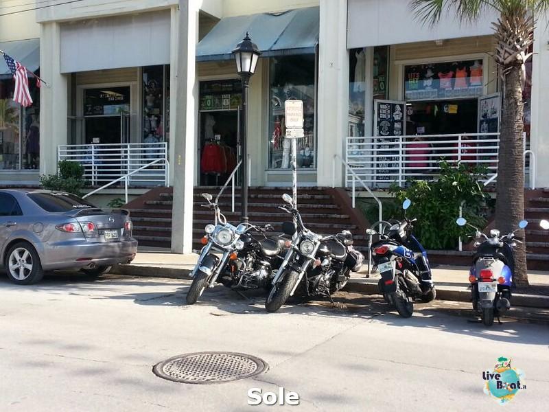 2014/01/05 Key West (visite varie, ecc) + pernottamento-39-key-west-diretta-liveboat-crociere-jpg