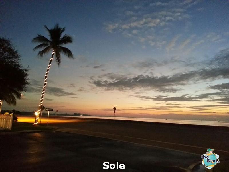 2014/01/06  Key West- Miami e volo di rientro-76-key-west-23-diretta-liveboat-crociere-23-jpg