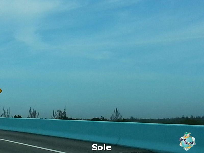2014/01/06  Key West- Miami e volo di rientro-6-key-west-miami-partenza-diretta-liveboat-crociere-jpg